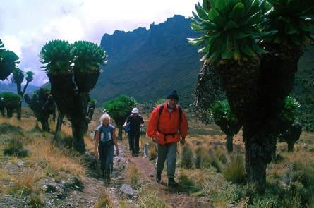 Kenia_Mt. Kenya oder nicht-Fragezeichen