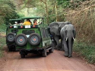 Verkehrsituation im Lake Manyara NP