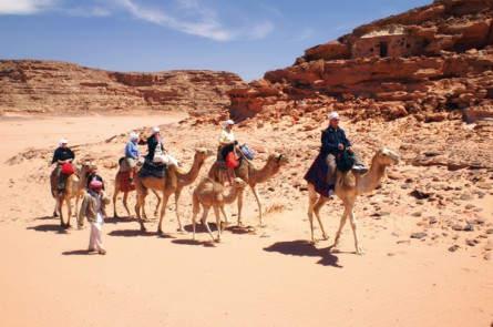 Sinai Kameltrekking (9.-12.Tag)