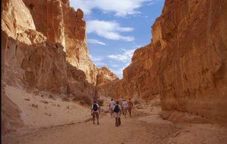 Wüste, Berge, Rotes Meer