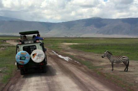 Im Ngorongoro Krater - Neugierde auf beiden Seiten