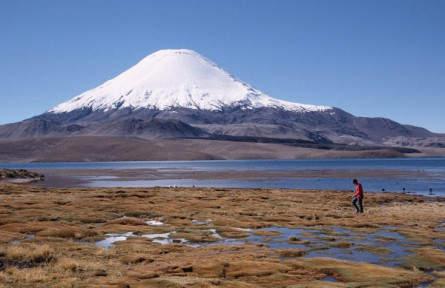 Lago Chungara im NP Lauca mit Vulkan Parinacota im Hintergrund