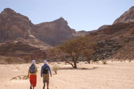 Zu Fuß und auf dem Kamelrücken durch die Wüste