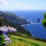 Hortensiengerahmte Ausblicke auf Flores