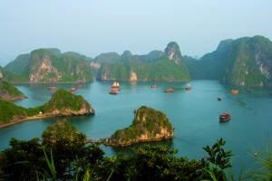 Nostalgische Dschunken in der malerischen Halongbucht im Norden Vietnams