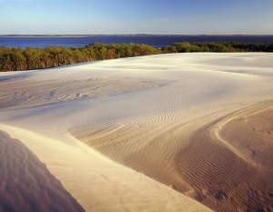 Die polnische Sahara bei Łeba - sicher einen Besuch wert!