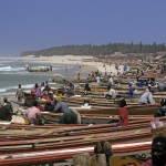 Kayar - Fischer bringen Ihren Fang nach Hause