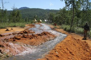 Warme Quellen (Fluss) im üppig grünen Natytschewo-Nationalpark