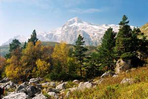 Willkommen im Kaukasus!