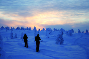 Das Licht der Polarnächte ist einzigartig: so sieht es 200 km nördlich des Polarkreises spätnachmittags in Januar aus!