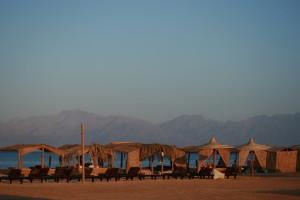 Strand in Nuweiba - perfekter Ort zur Erholung und Ausgangspunkt für Touren in die Wüste und ins Gebirge