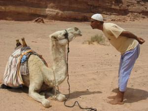 Sam versteht sich auch mit Kamelen gut :-)