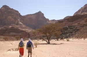 Ruhe und Einsamkeit der Wüste genießen