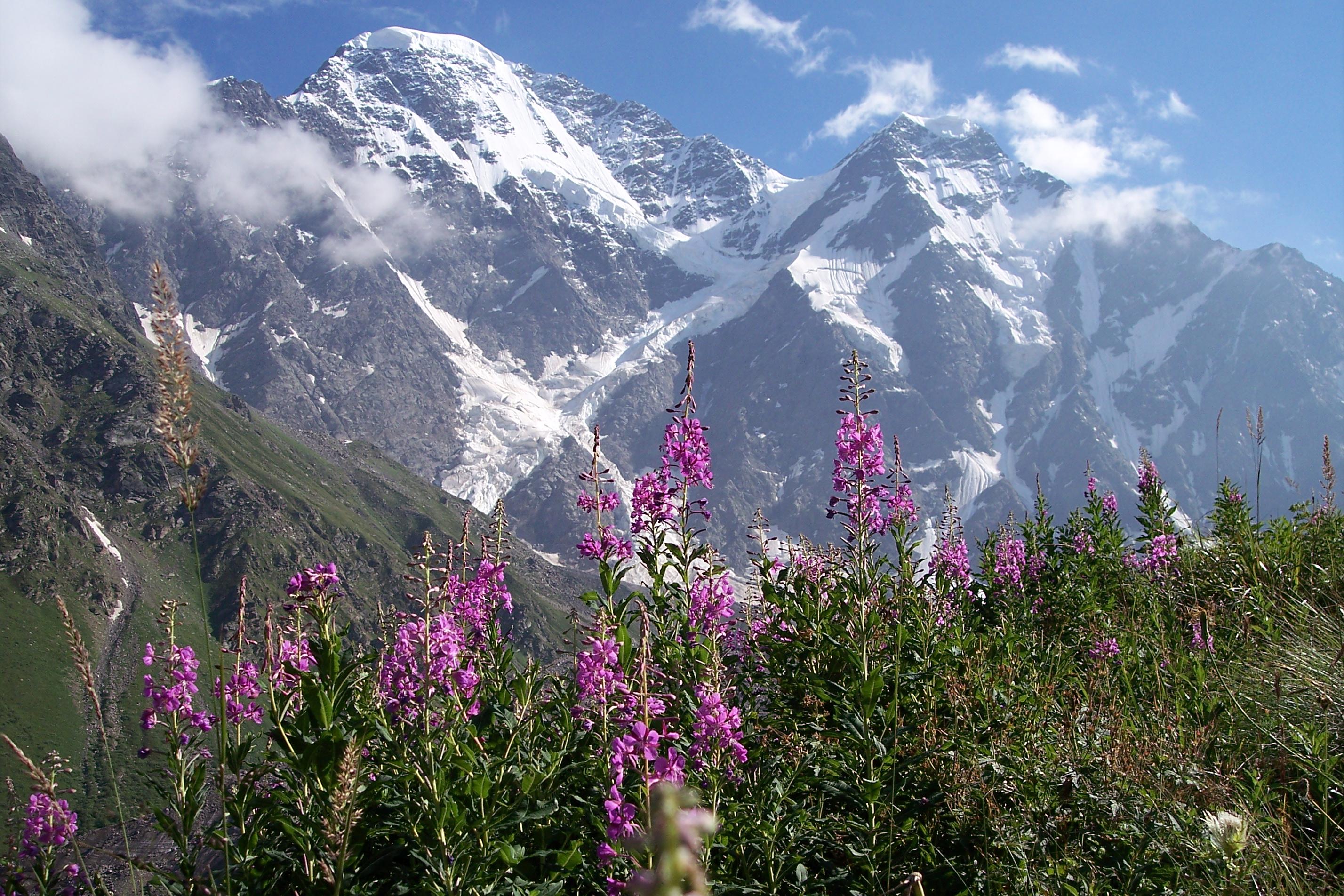 Unterwegs im Bergparadies ...