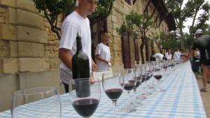 Etwa alle 2 km wartet eine Weinprobe