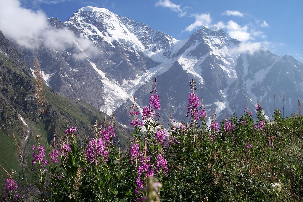 Unterwegs im Bergparadies