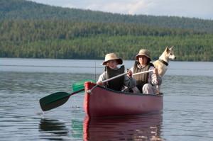 In ihrem Sommerurlaub fahren die Huskys lieber mit ...