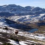 Besteigung des Pico Tunari in der gleichnamigen Kordillere