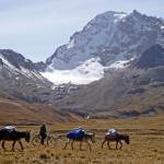 Condoriri Trekking in der Königskordillere