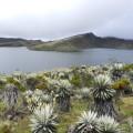 Trekking zur Quelle des Magdalena-Flusses, hoch oben im Páramo gelegen