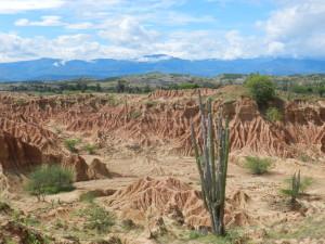 Auf einer Wanderung erleben Sie die Tatacoa-Wüste