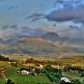 Die Weinberge im Hinterland von Kapstadt – hier gedeiht Weltklassewein