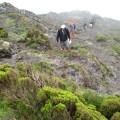 Aufstieg zum azoreanischen Pico durch Morgennebel.