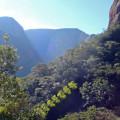 Im Amboro-Nationalpark