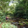 Wanderungen im Amboro Nationalpark