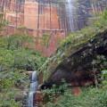 Hohe Sandsteinfelsen und üppiges Grün prägen den Nationalpark