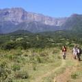 Der Mt. Meru thront markant im grünen, abwechslungs- und tierreichen Arusha NP.
