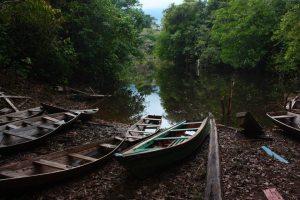 Amazonas – Grüße aus dem Urwald