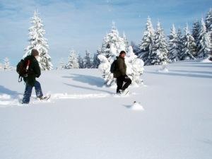 Auf Schneeschuhen durch die zauberhafte Winterlandschaft Mala Fatras