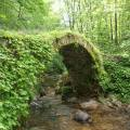 Eine zugewucherte Steinbrücke in den Rhodopen - hier zeigt sich Griechenland ungewohnt grün