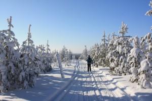 An der finnisch-russischen Grenze gibt es keine Staus ...