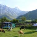 Die Ushba (4710 m) gehört zu den schwierigsten Gipfeln im Kaukasus. Vor der imposanten Kulisse wandern Sie zu den gleichnamigen Ushba-Wasserfällen.