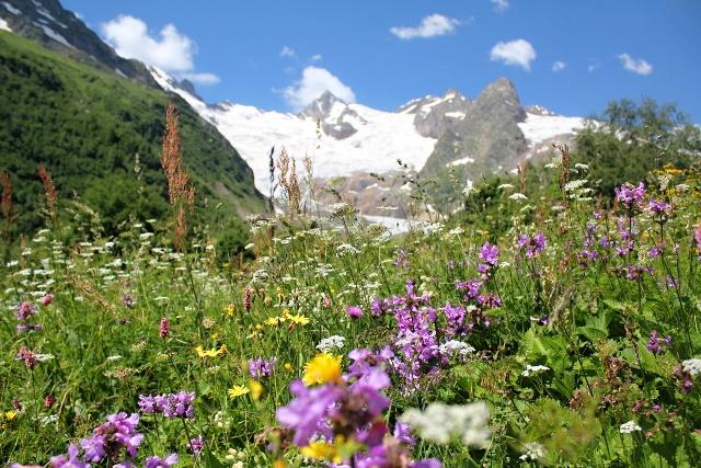 Bergparadies Kaukasus