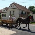 Pferdefuhrwerke gehören zum Straßenbild Rumäniens