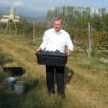 Willkommen im Weinland Kachetien!