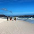 Wanderung am einsamen Nordhoek Beach