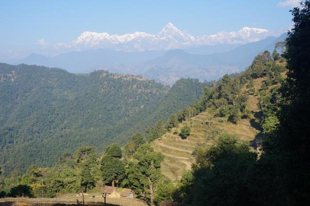 Blick auf die Annapurnakette