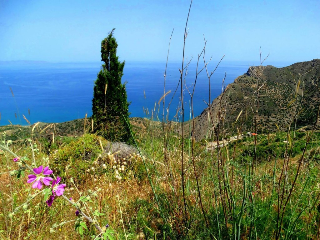 Mai auf Kreta ...