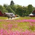 Tour durch eine Landschaft wie aus einem Lindgren-Roman