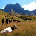 Wanderung durch das schöne Sno-Tal: Bei guten Wetterverhältnissen ist der imposante Berg Tschauchebi (3842 m) zu sehen.