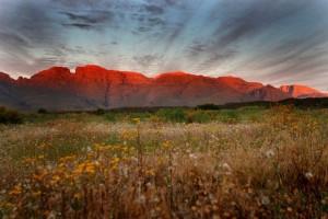 Morgendämmerung in Ihren Camp am Fuße der Cederberge in Südafrika