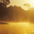 Regenwaldschutzgebiet Pacaya Samiria
