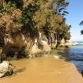 Goldene Strände im Abel-Tasman-Nationalpark
