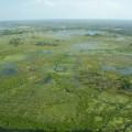 Ein Flug über das Okavango-Delta ist ein einmaliges Erlebnis!