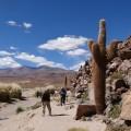 Wanderung in der Kaktusschlucht