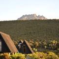 Blick von den Horombo-Hütten auf den Nebengipfel Mawenzi